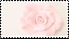 Delicate Flower | Stamp