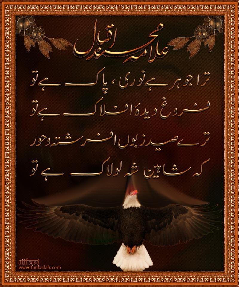 Iqbal Urdu Shayari Images: Urdu Poetry Allama Iqbal By Atif80Saad On DeviantArt