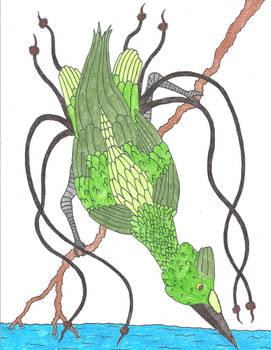 Emerald Angler