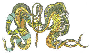 Ghilani by EvolutionsVoid