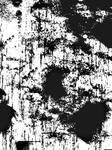 Black N White Splatter