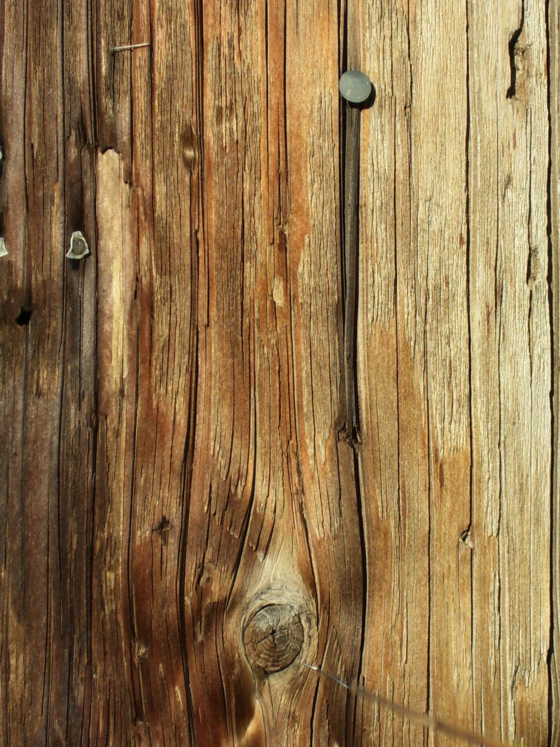 Wood Texture Stock