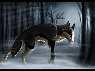 Pale Winter Mists by scrii