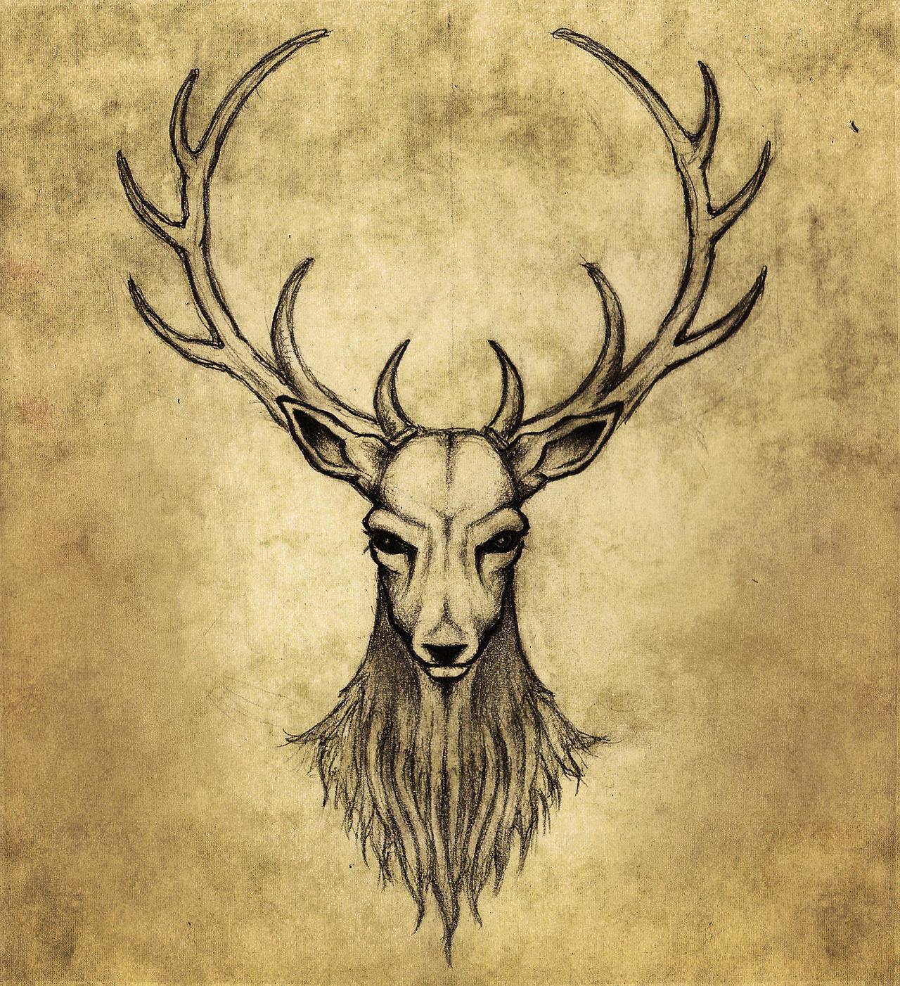 Oh My Deer By AnaKarniolska On DeviantArt
