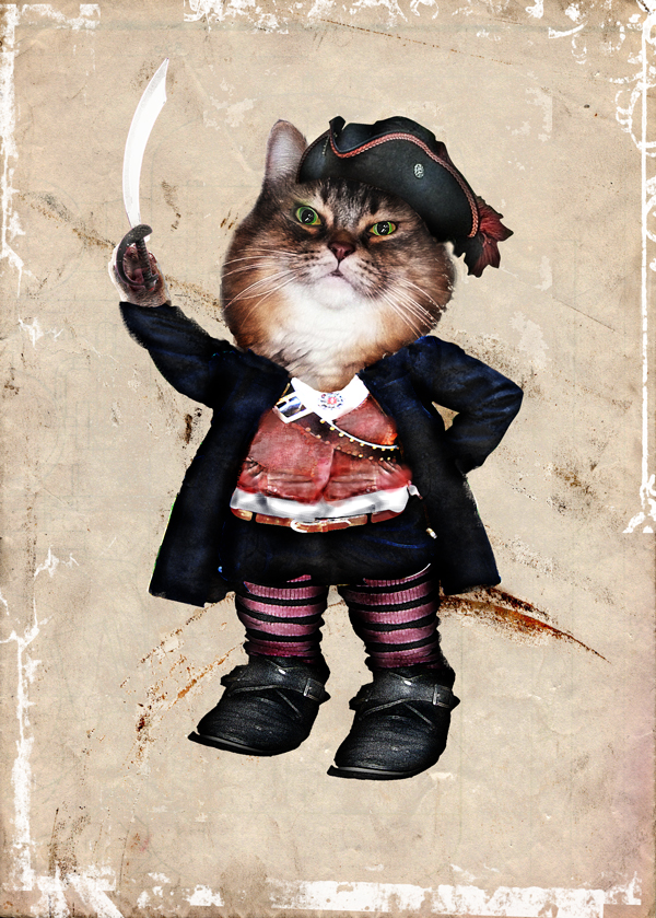 pirate cat by gw3n