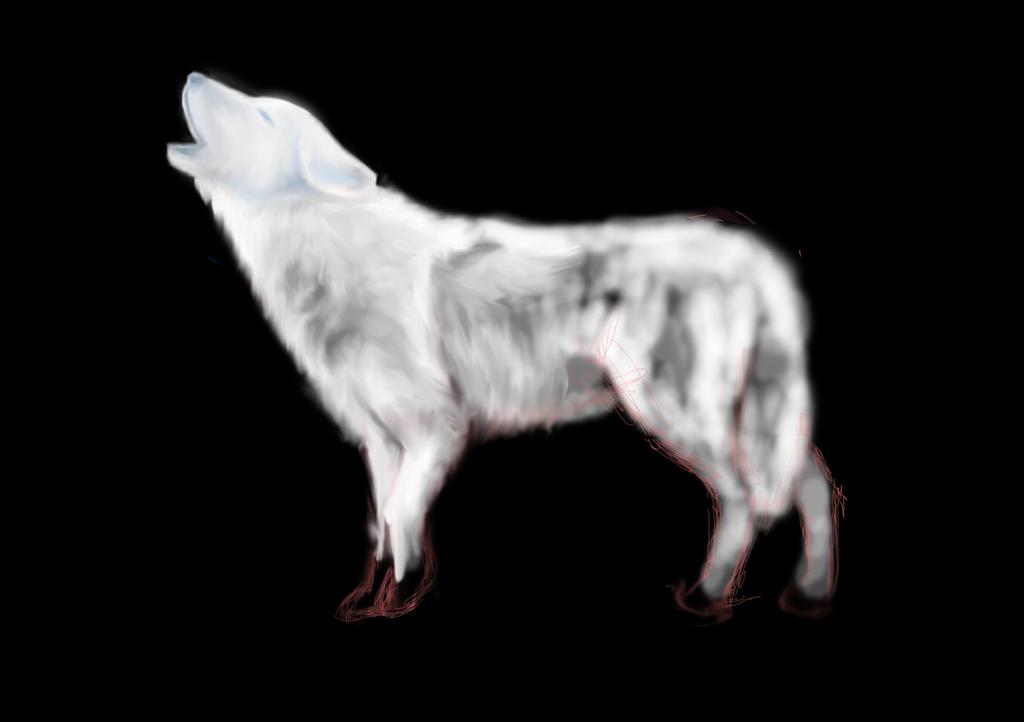 Wolf Patronus (commission) WIP1 by amaryllis-bloom