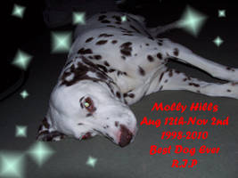 You will be missed... Molly