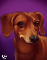 Molly Pet Portrait
