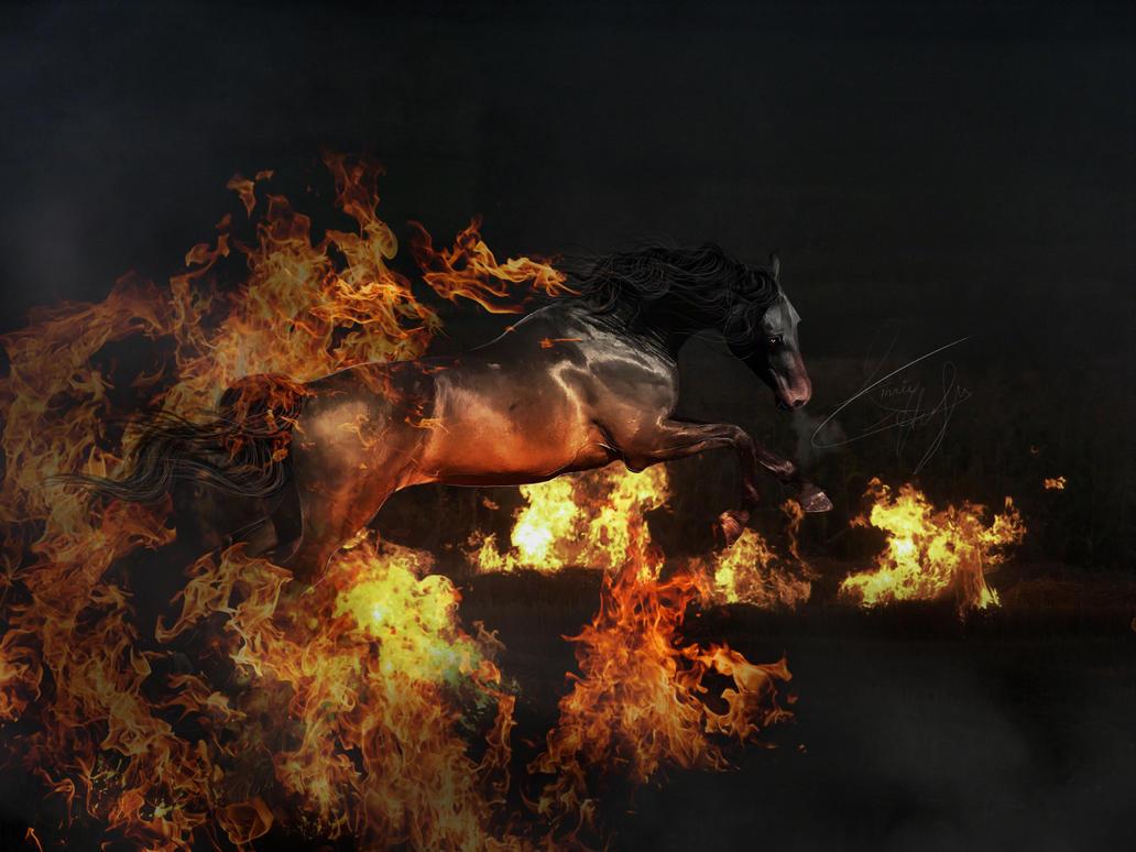 I am Fire by Black-Lotus-Designs