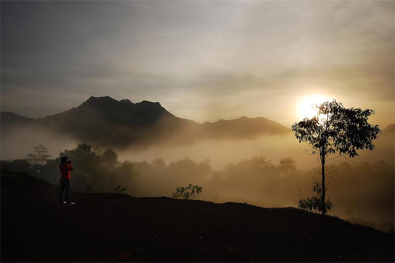 Fog by porbital