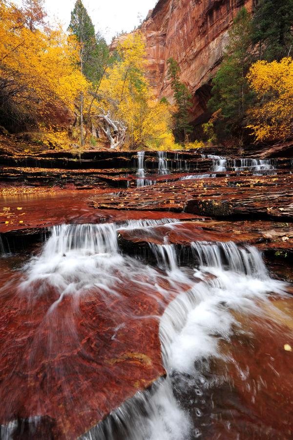 fall in fall by porbital