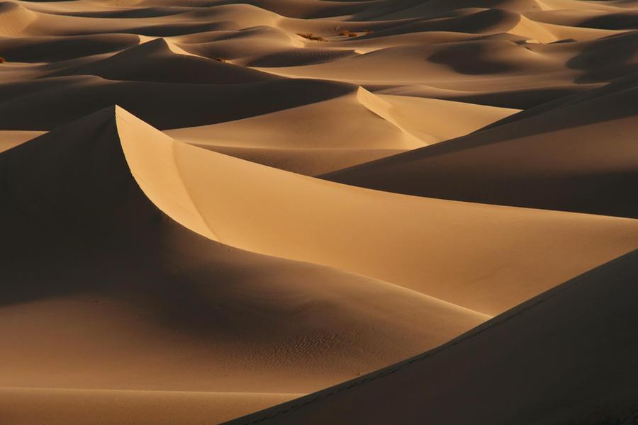 Dunes by porbital