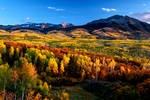 Autumn Carpet by porbital