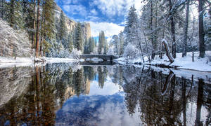 Winter wonderland by porbital