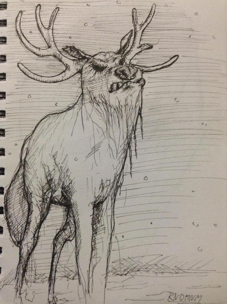 Reindeer by rndmnm
