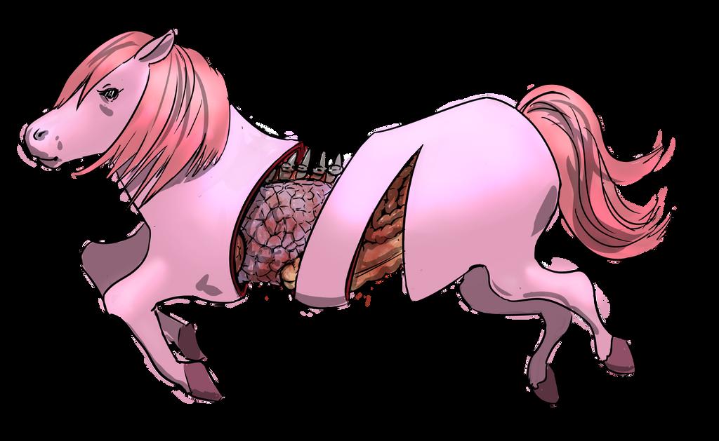 Cutted Pony by rndmnm