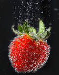 Semi-macro of strawberry