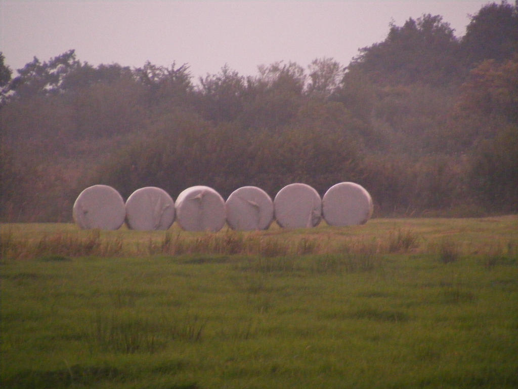 all done by Mayolijntje