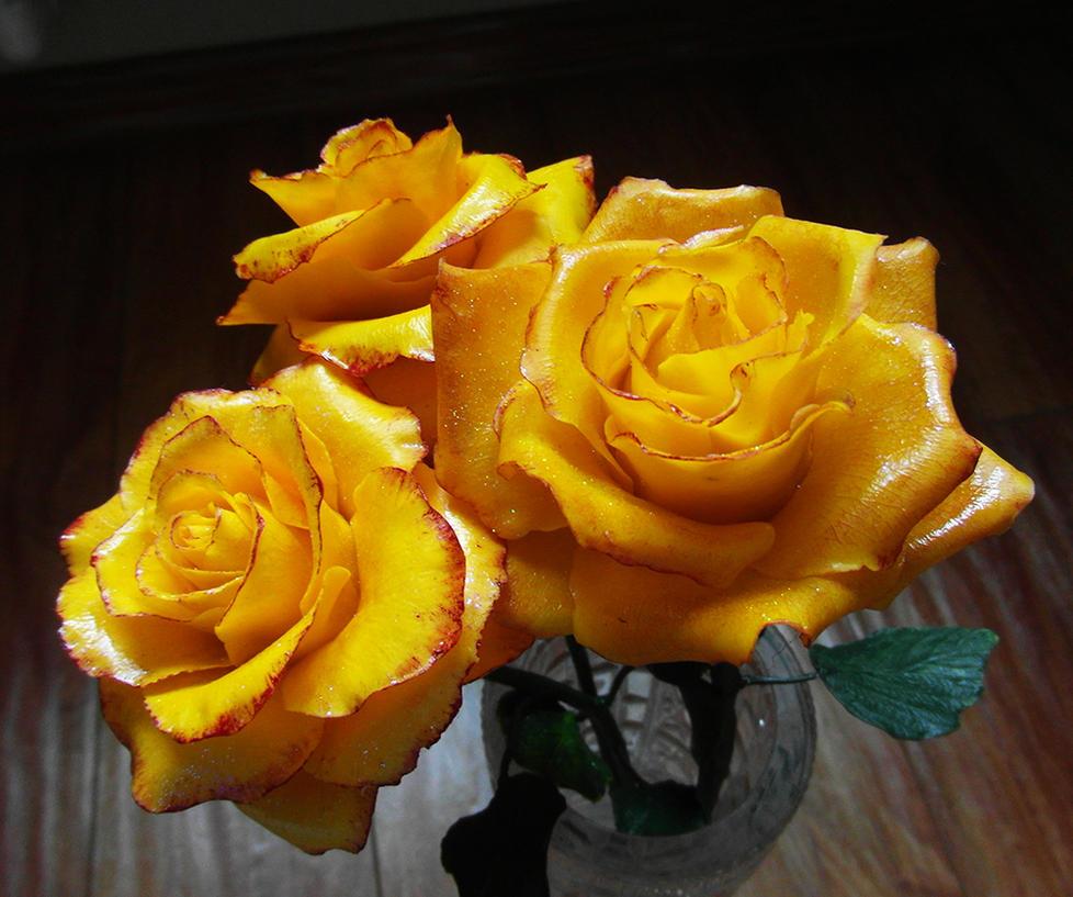 Yellow roses by SINKandSHTAYN