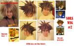 + Sora Wig Number Two +
