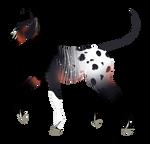 N7346 padro foal design