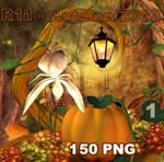 R11 - Autumn 2012 1