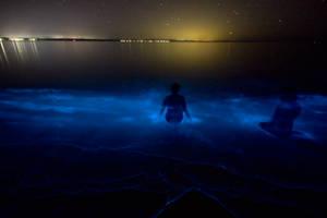 Mermaids by DreamMyWonderland
