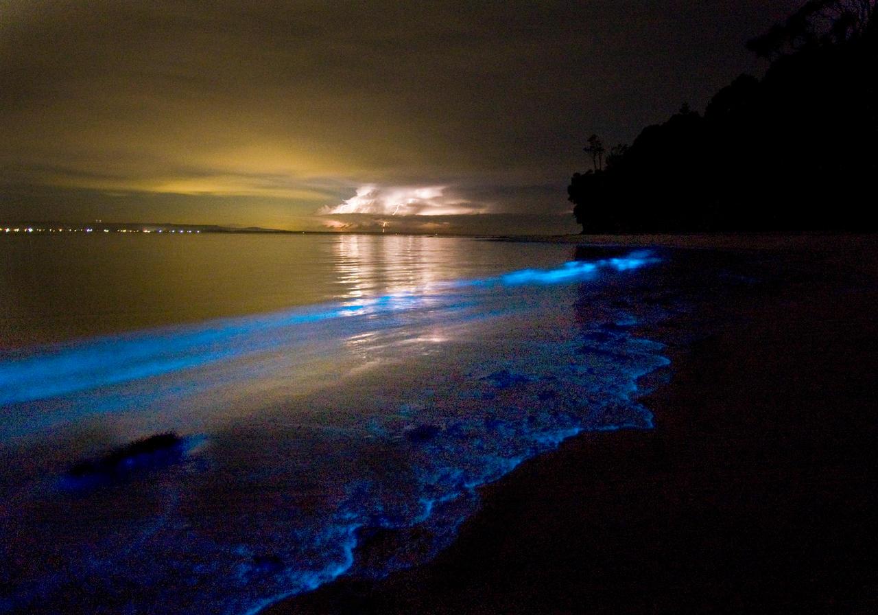 Фото ночью на пляже 17 фотография