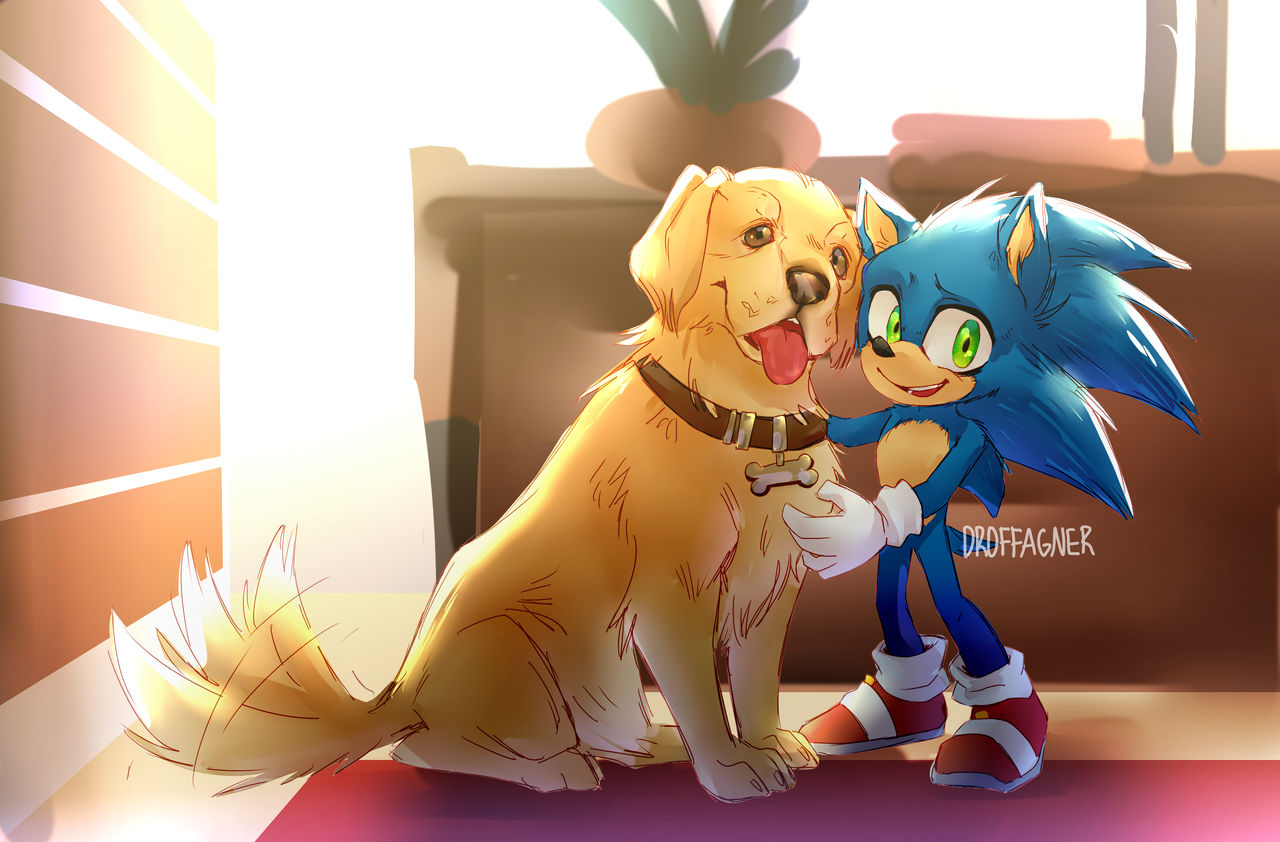Sonic And His New Friend By Kingofhighlands On Deviantart