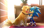 Sonic and his new friend