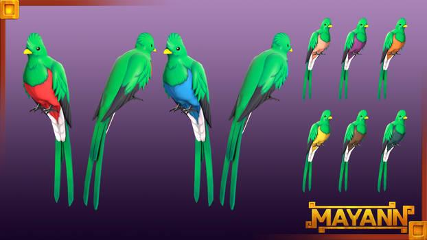 Quizzical Quetzal