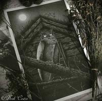 The Omen by Derek-Castro