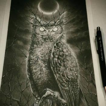 King Owl by Derek-Castro