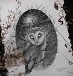 Majesty Owl II