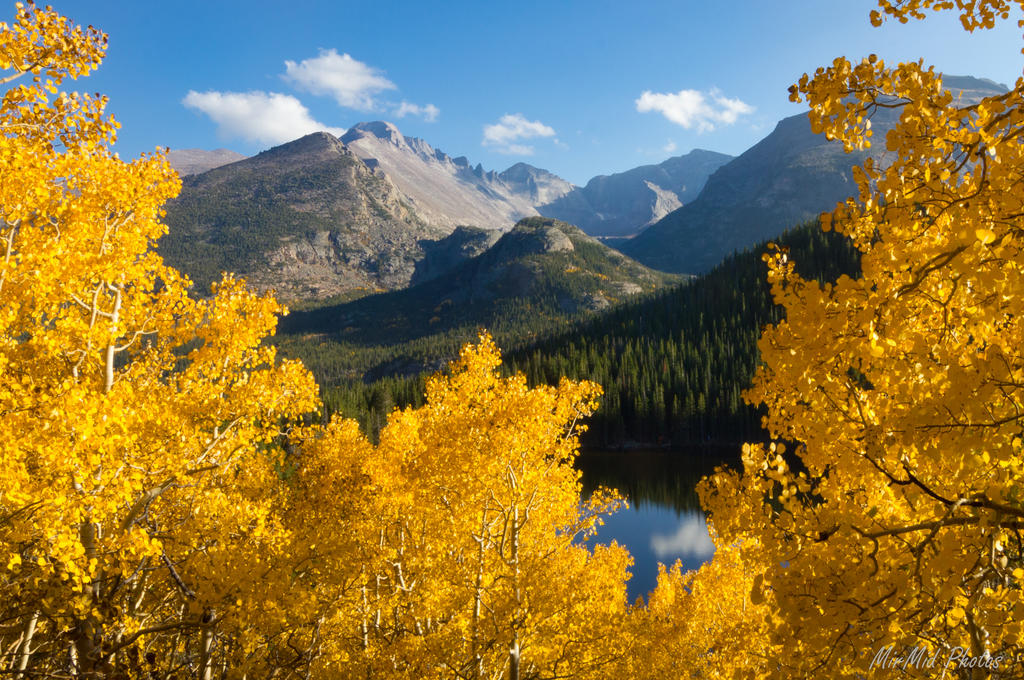 Between the Glowing Aspens by invisiblelife