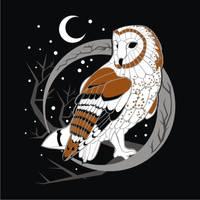 Barn Owl by Mirveka