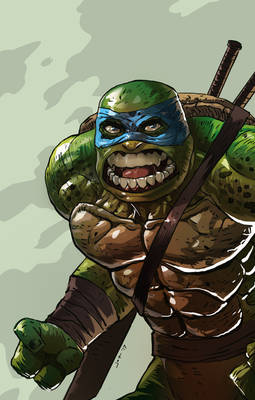 Angry Turtle