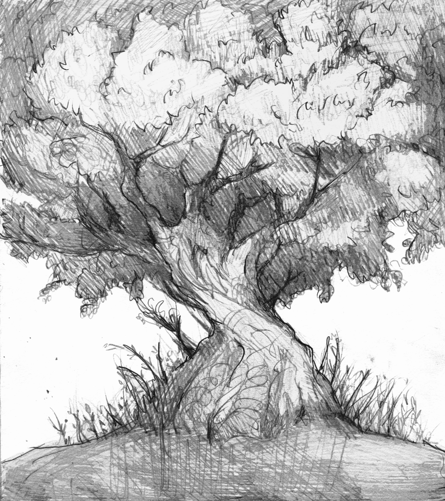 Tree study by MuffinChaser