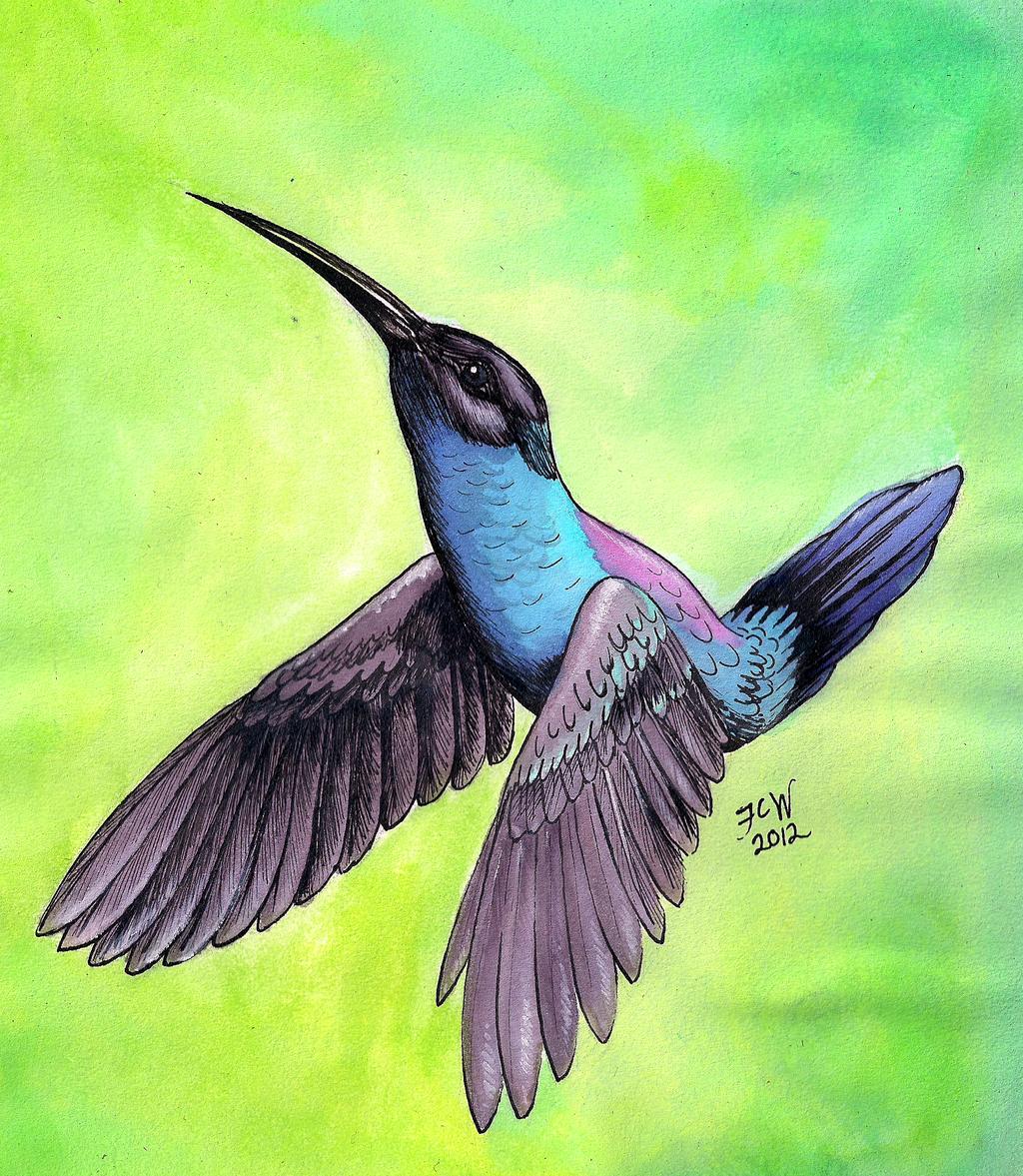 Kolibri by BestrafexMich