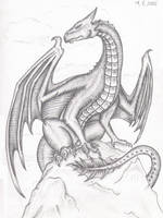 Memory-dragon by XTrinitkaX