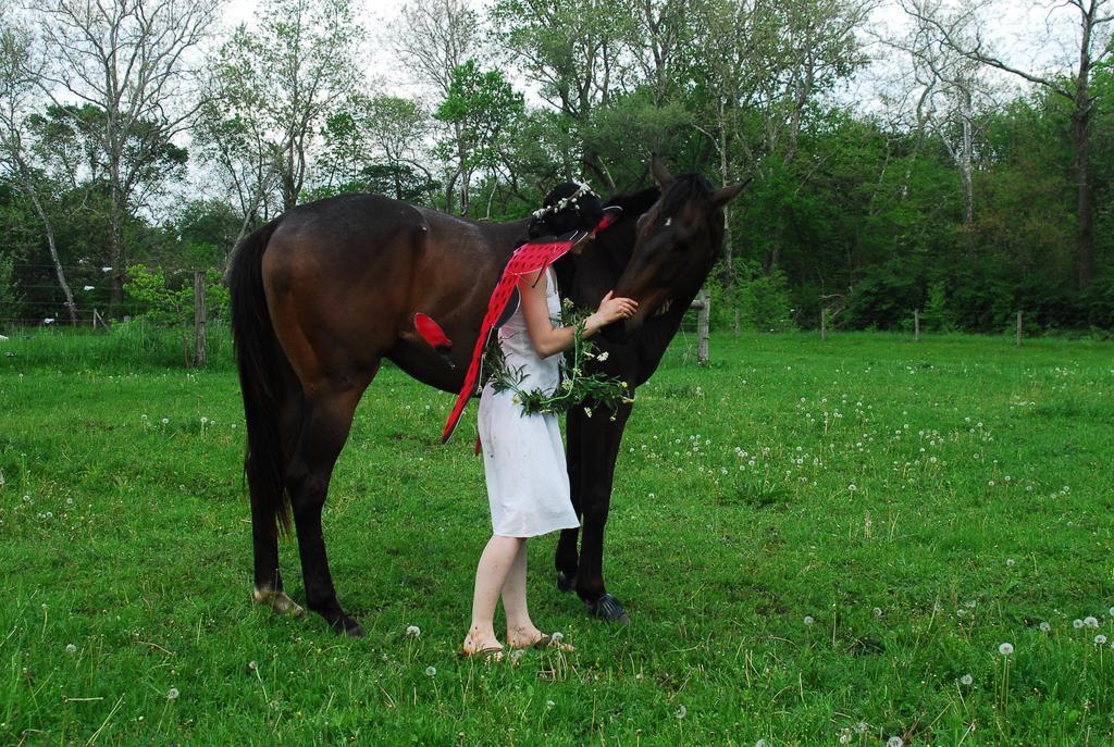 Spring Fairy #11 by elusiveelegance