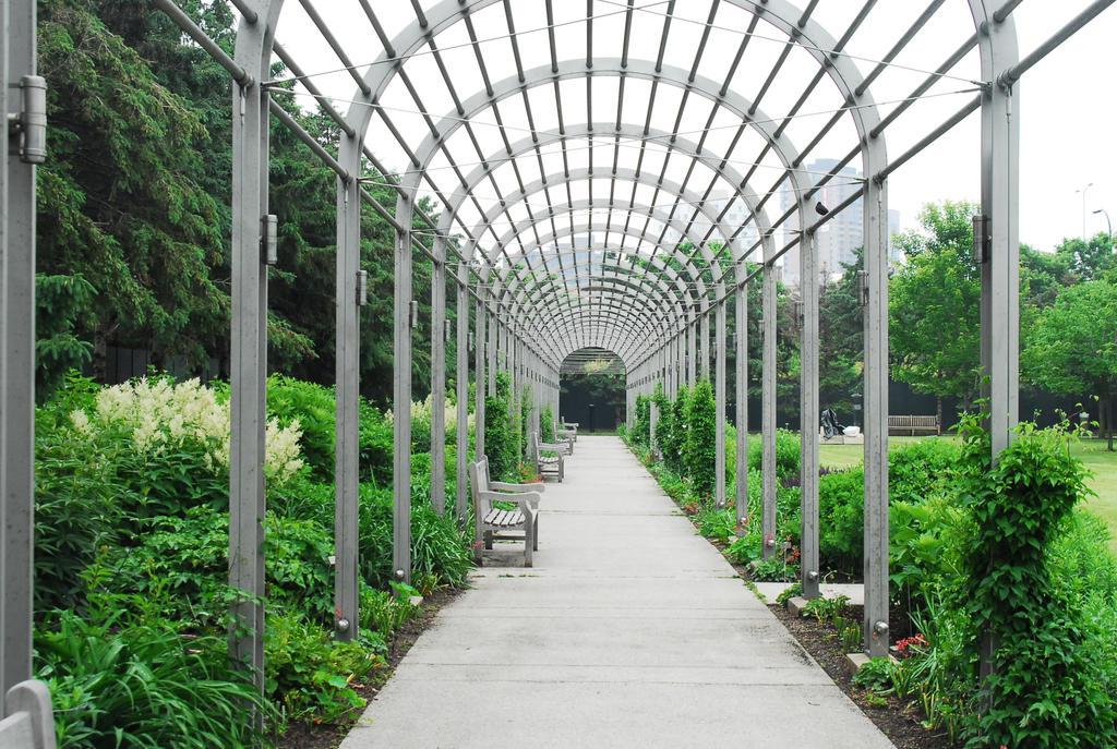 Outdoor tunnel by elusiveelegance
