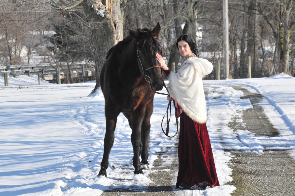 Medieval Equestrian 134 by elusiveelegance