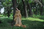 Gold Dress 038