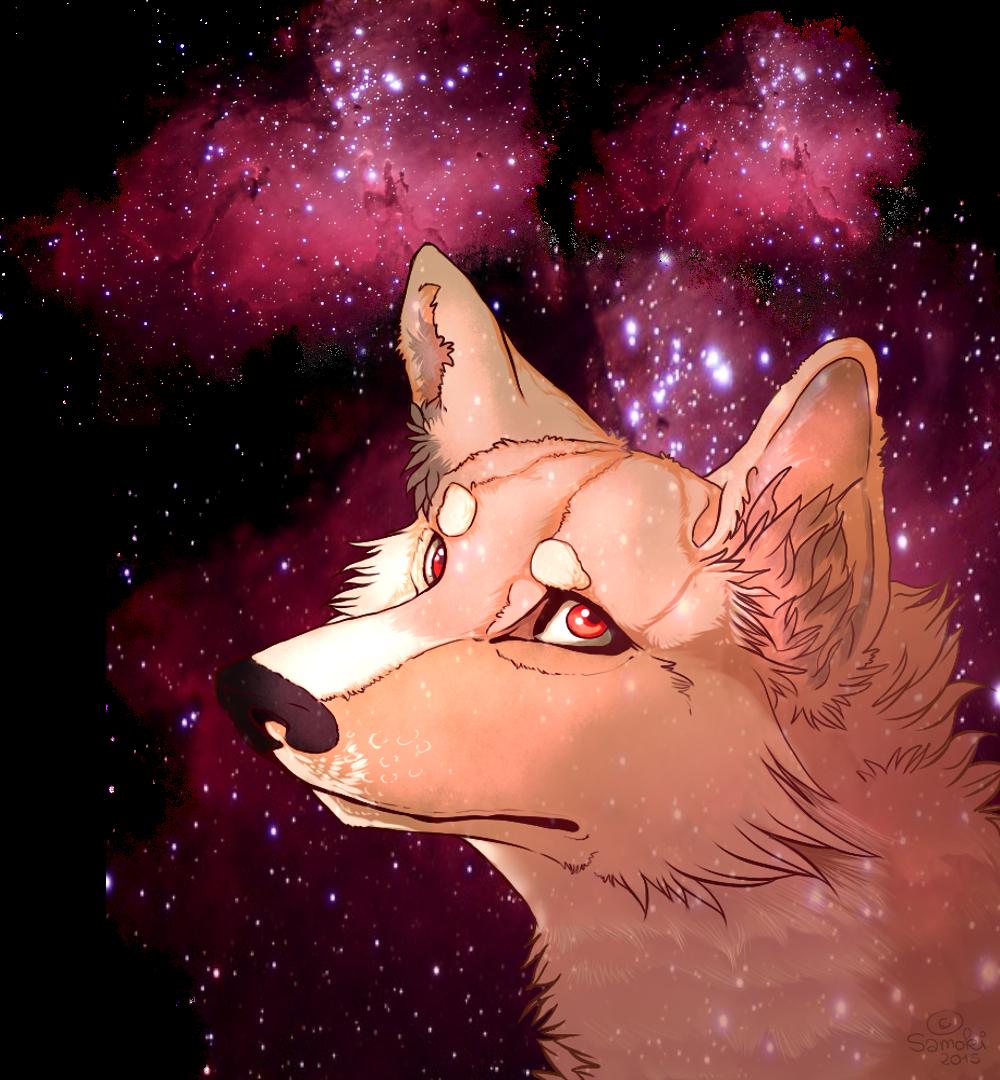 Samoki's Profile Picture
