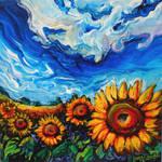Ukraine Sunflower Fields