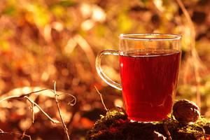 Tea Time by Like-A-Kitty