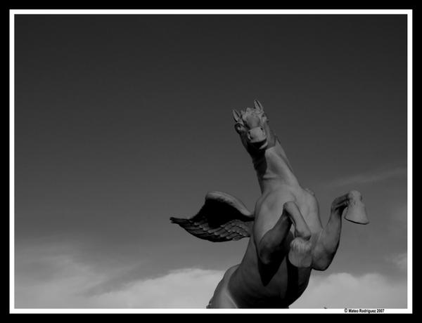 Pegasus by MateO-pUMBa