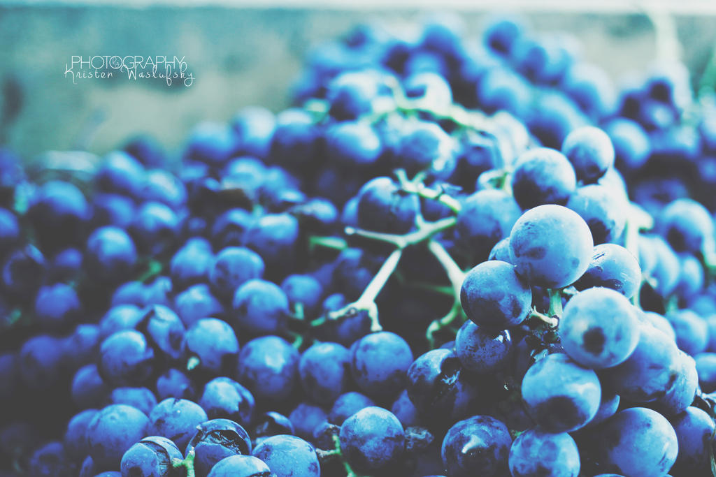 Vineyard Grapes by Okarev