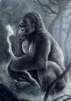 King Gorilla by CaioRob